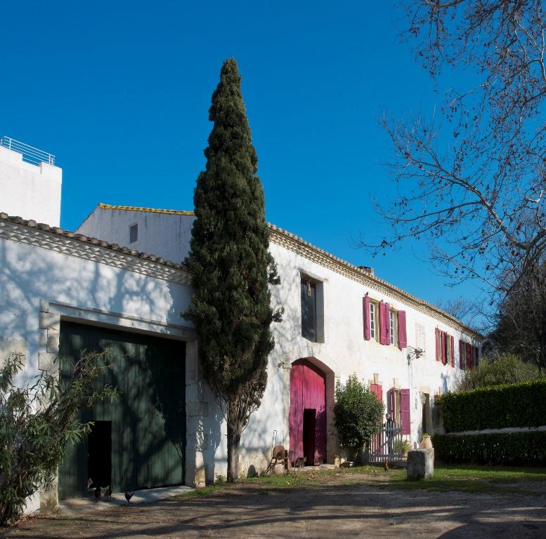 Vente Mas Arles (14)