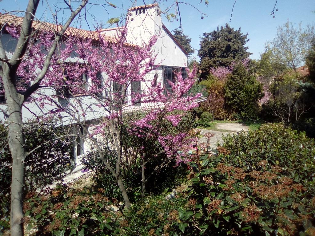 vente maison Nimes Tourmagne (3)