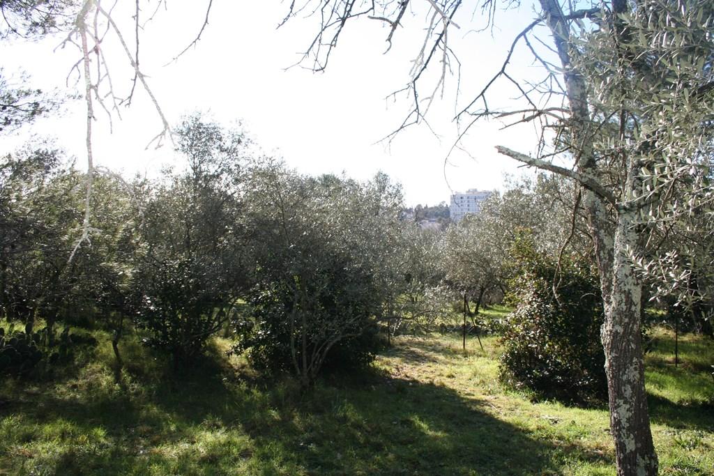 nimes vente terrain joili vue (5)