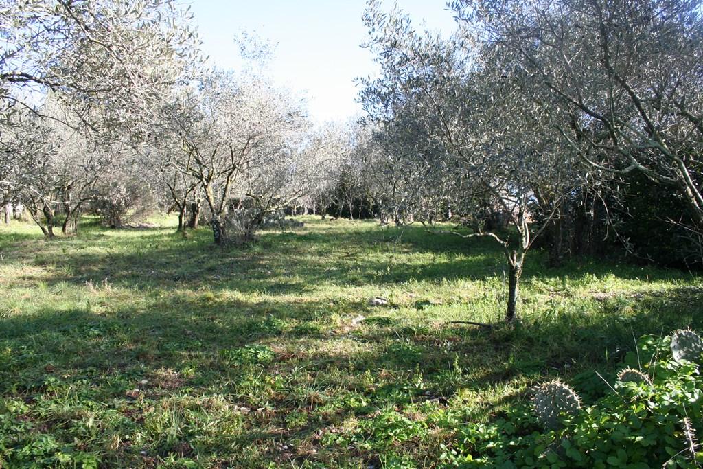 nimes vente terrain joili vue (7)