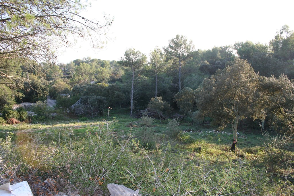 vente terrain nimes (1)