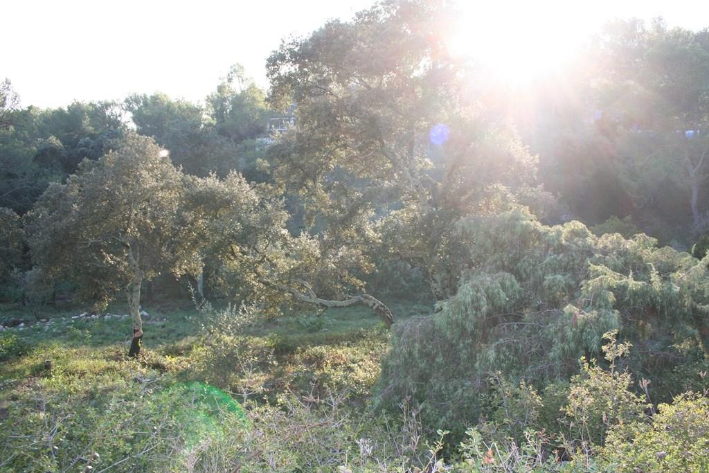 vente terrain nimes (2)