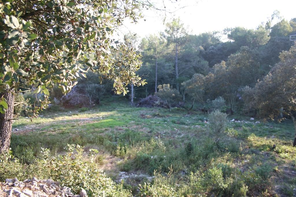 vente terrain nimes (3)