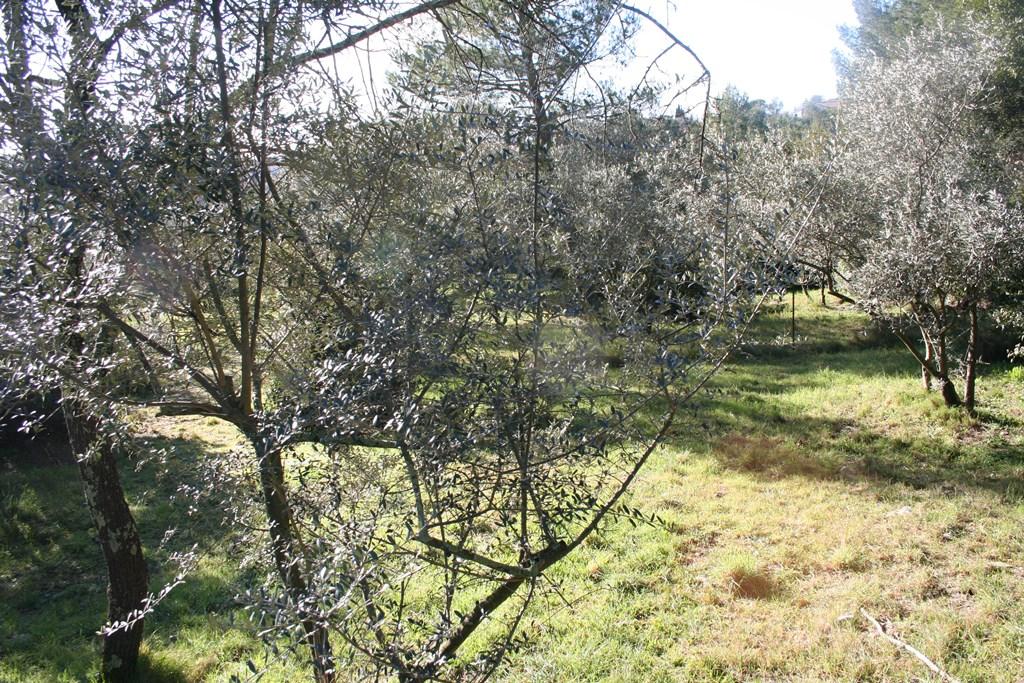 nimes vente terrain joili vue (4)