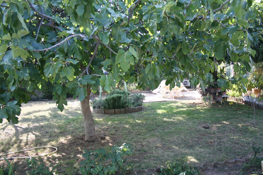 vente terrain marguerittes (1)